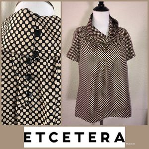 ETCETerA 100% Silk unique Blouse sz 8